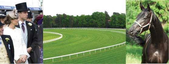Epsom Downs – a great day out near Merrywood Park