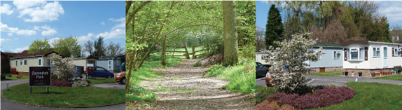 Cavendish Park in Spring, and woods near Basingstoke Canal, also in Spring
